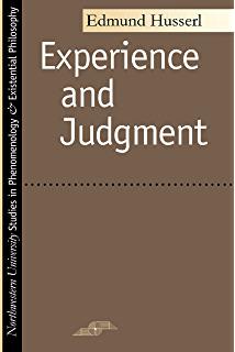 Consciousness and the acquisition of language studies in experience and judgment studies in phenomenology and existential philosophy fandeluxe Gallery