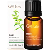 Gya Labs Basil Essential Oil - Mind Concentrator for Better Focus & Sore Free Body (10ml) - 100% Pure Natural Therapeutic Grade Basil Oil Essential Oils for Aromatherapy Diffuser & Topical Use