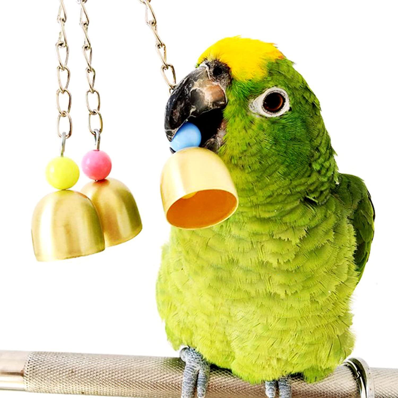 Jaula de pájaros para pájaros, loro, pájaros, macaw africano, gris, Amazon Eclectus Cockatoo, paracakeet, cacatúas, pájaros, jaula de ardilla