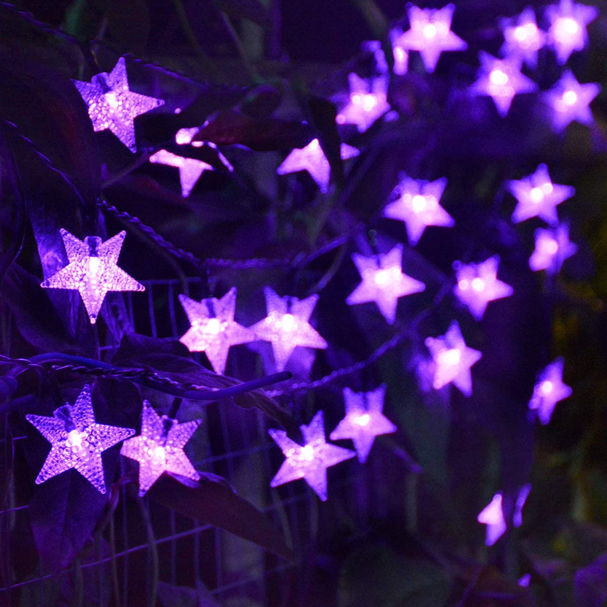 Chasgo Solar Purple Star Lights Outdoor, 30FT 50 LED Purple Halloween Lights Outdoor, Waterproof Solar String Lights for Christmas Halloween Party Garden Yard Patio Tree Home Decor