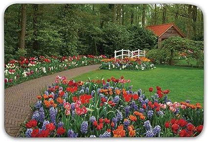 Decoración para el hogar del país Alfombrilla antideslizante, un jardín de primavera con bosque Cabaña Puente pequeño Plantas macizos de flores y pasarela Felpudo para la puerta delantera Alfombra de: Amazon.es: Hogar
