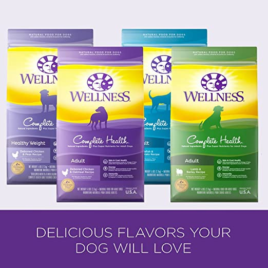 best-large-breed-puppy-food
