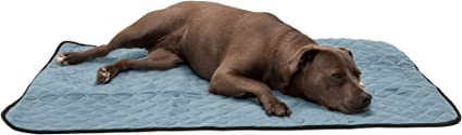 Medium Furhaven Pet Dog Bed Heating Pad ThermaNAP Quilted Plush Velvet Insulated Thermal Self-Warming Blanket Pet Bed Mat for Dogs /& Cats Clay