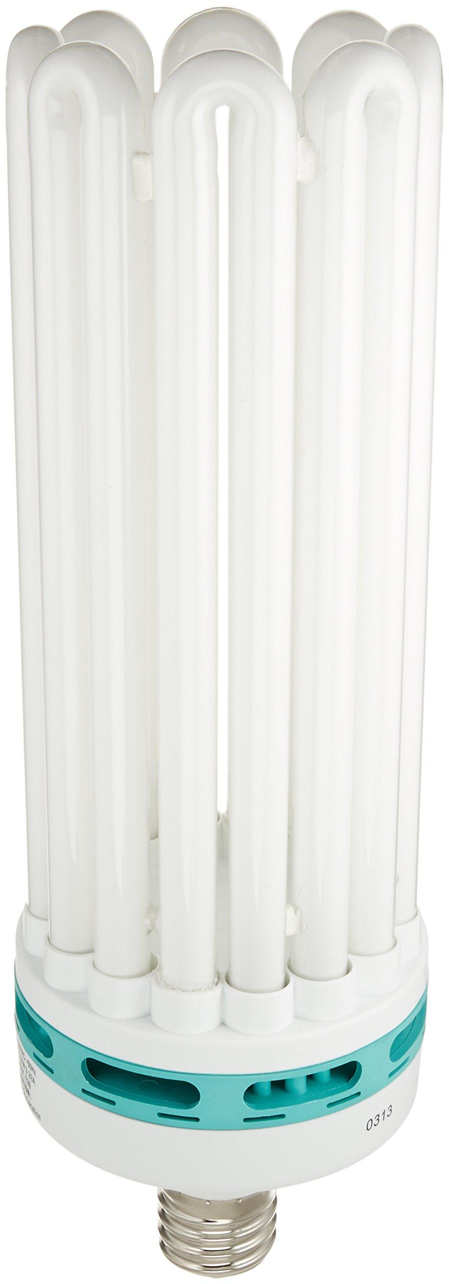 SunBlaster CFL Self ballasted Propagation lamp, 6400K Light Spectrum, 200 Watt, Use Mogual Size Light Socket