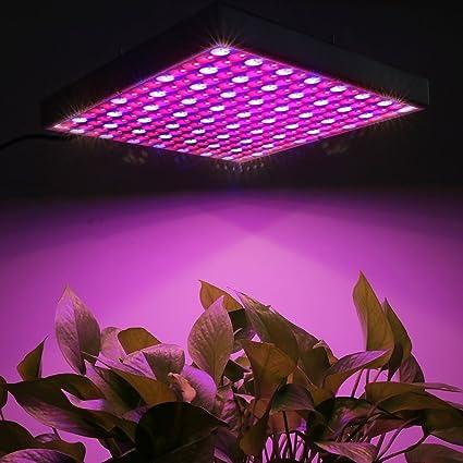 Bombillas , 45W 225 LED SMD 2835 Rojo + Azul Luz LED Crecimiento de las plantas