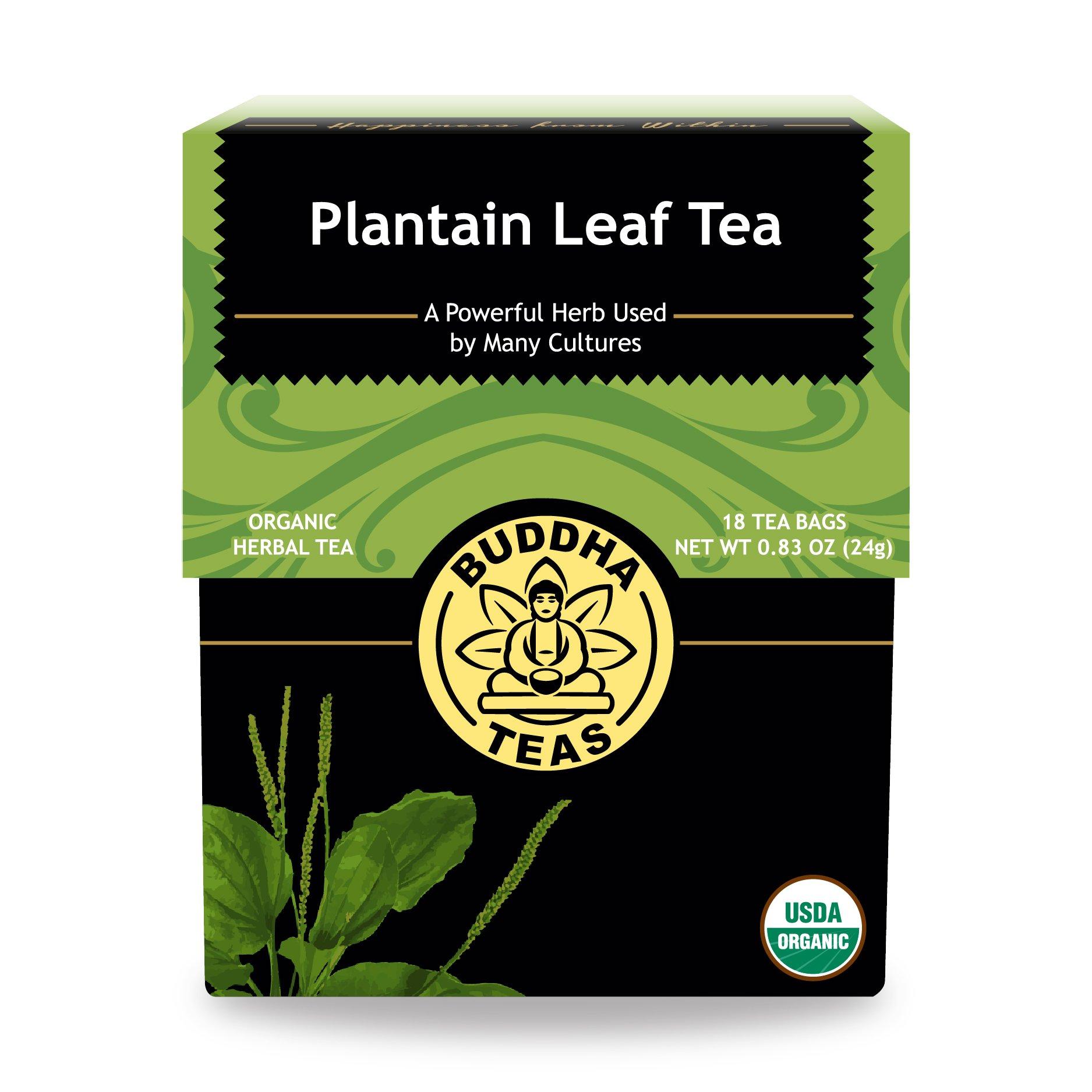 Organic Plantain Leaf Tea - Kosher, Caffeine-Free, GMO-Free - 18 Bleach-Free Tea Bags