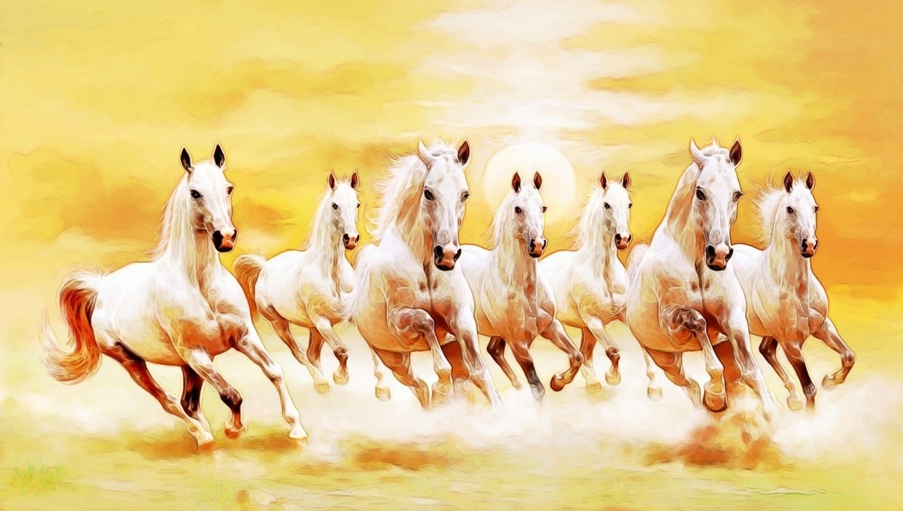 7 white horse images hd wallpaper images