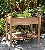Arboria Cedar Raised Garden Planter Box with Shelf Grow Plants and Flowers For Patio and Outdoors