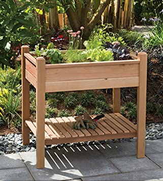Superbe Arboria Cedar Raised Garden Planter Box With Shelf Grow Plants And Flowers  For Patio And Outdoors