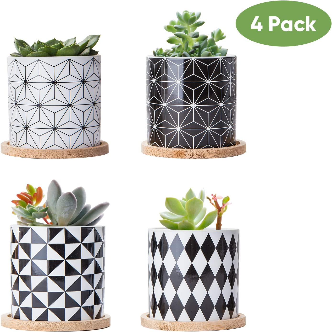 Succulent Plant Pots,Brajttt 3 Inch Cylindrical Ceramic Planter for Cactus,Succulent Planting,with Bamboo Trays,Pack of 4