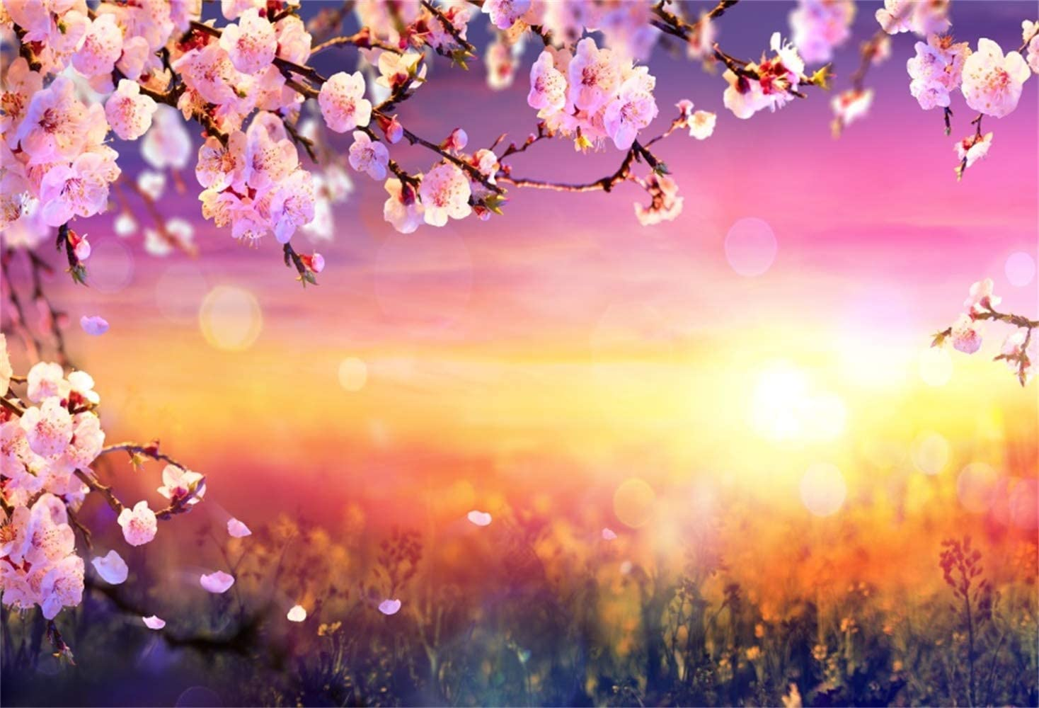 10x6.5ft Cherry Blossom Background Spring Sunset Polyester Photography Backdrop Warm Sunshine Pink Flowers Newlywed Romantic Wedding Photo Studio Greeting Card Personal Portraits Shoot