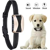 Bark Collar for small dogs & Medium Dogs, Humane Shock Vibration Modes No Bark Training Collar,Adjustable 7 Sensitivity 3 Modes Rechargeable Rainproof