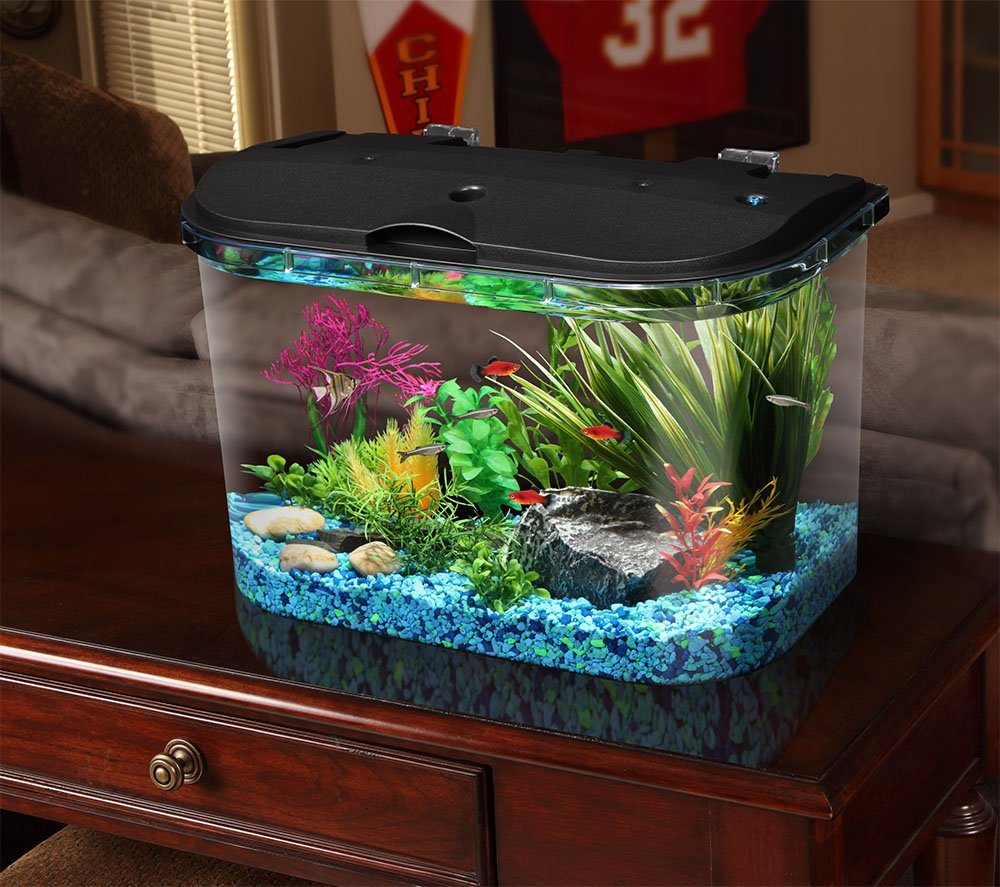 Amazon.com: Koller Products Panaview 5-Gallon Aquarium Kit with LED ...