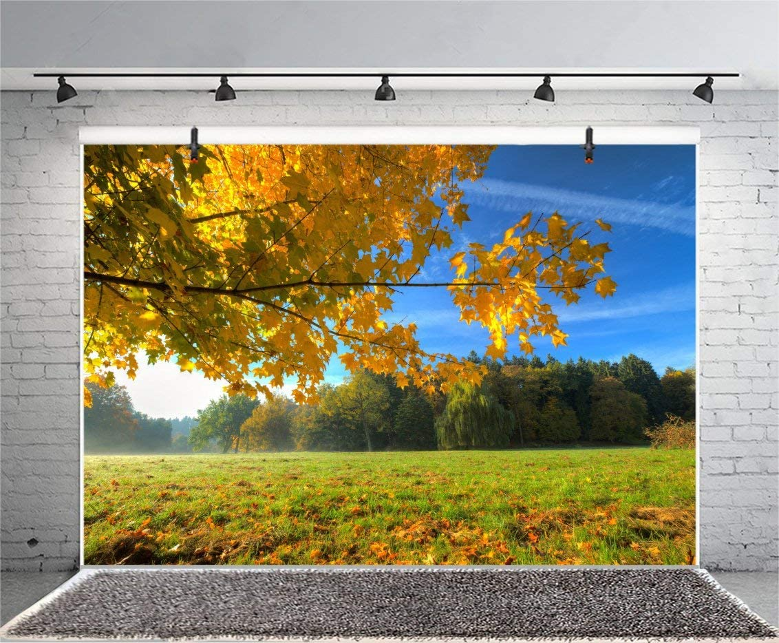 GoEoo 9x6ft Sunny Autumn Scene Backdrop Country Scenic National Forest Park Background for Photos Yellow Maple Tree Leaves Grassland Photography Portrait Vinyl Studio Props