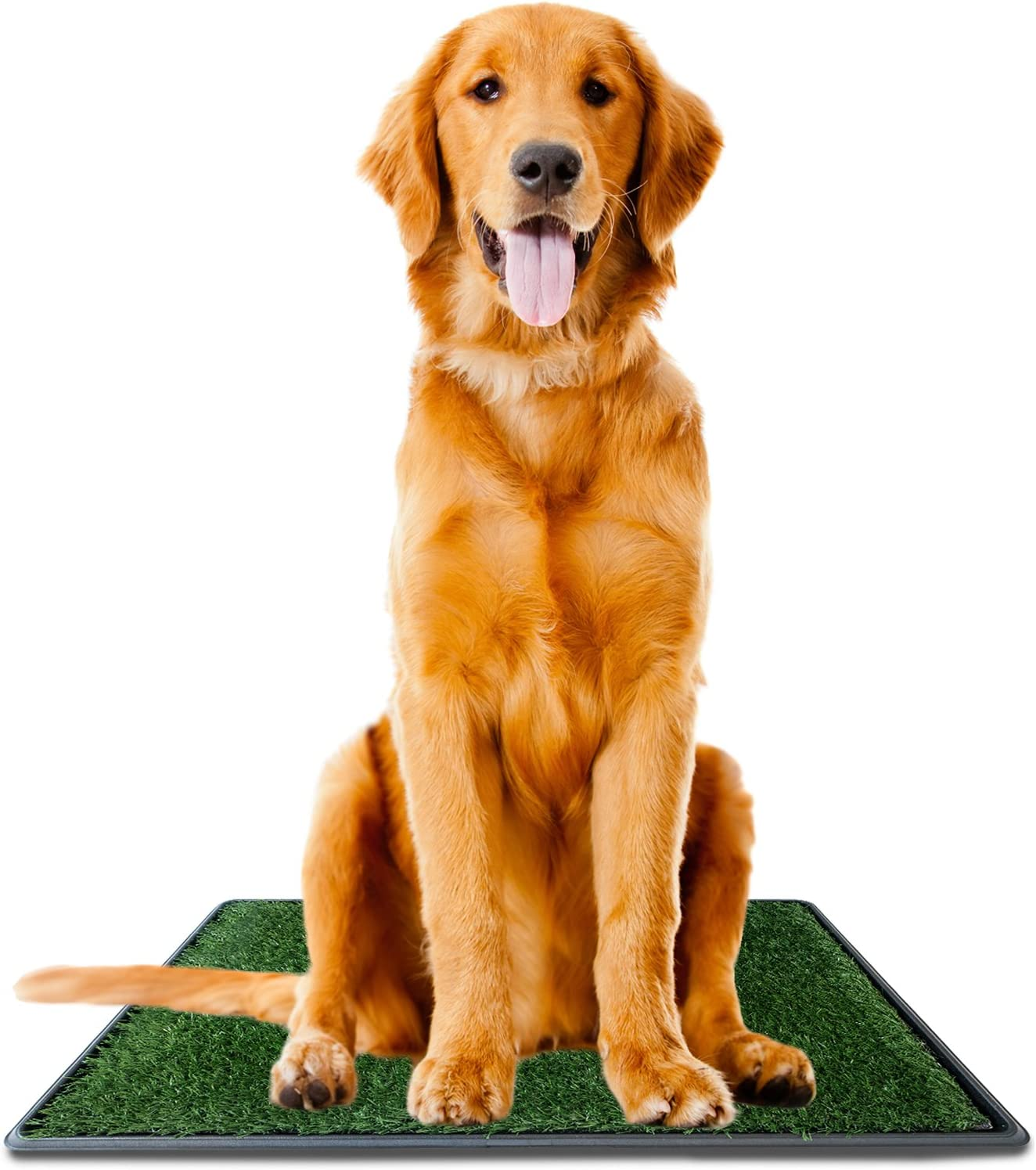 """Ideas In Life Dog Potty Grass Pee Pad – Large 20"""" x 30 Artificial Pet Grass Patch for Dogs Indoor Outdoor Litter Box - e-Book for Potty Training"""