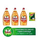 Salvo Salvo Lavatrates Líquido Concentrado 750ml 3 Unidades, Total 2.25 lts con Esponja, Pack of 1