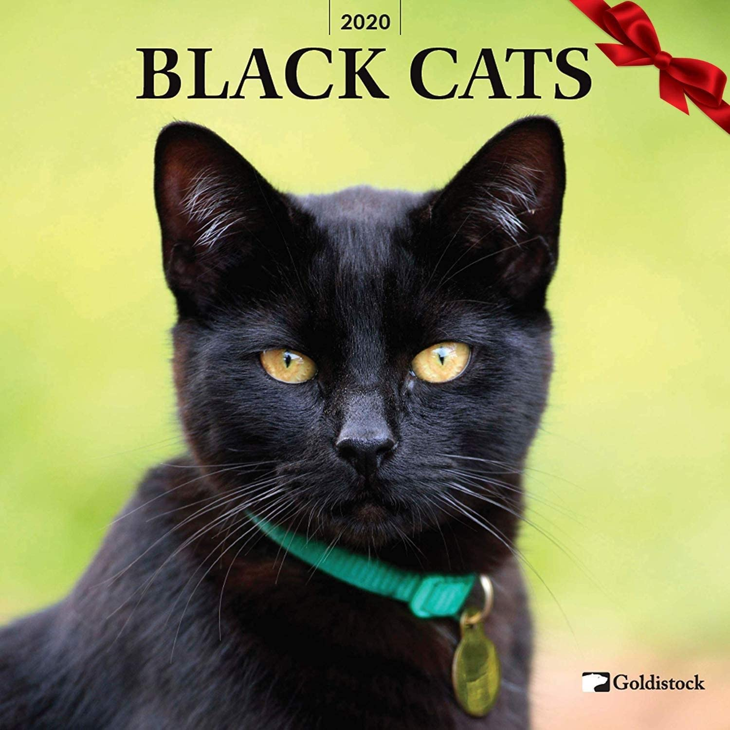 Amazon Com Goldistock 2020 Large Wall Calendar Black Cats 12 X 24 Open Thick Sturdy Paper Beautiful Mysterious Office Products