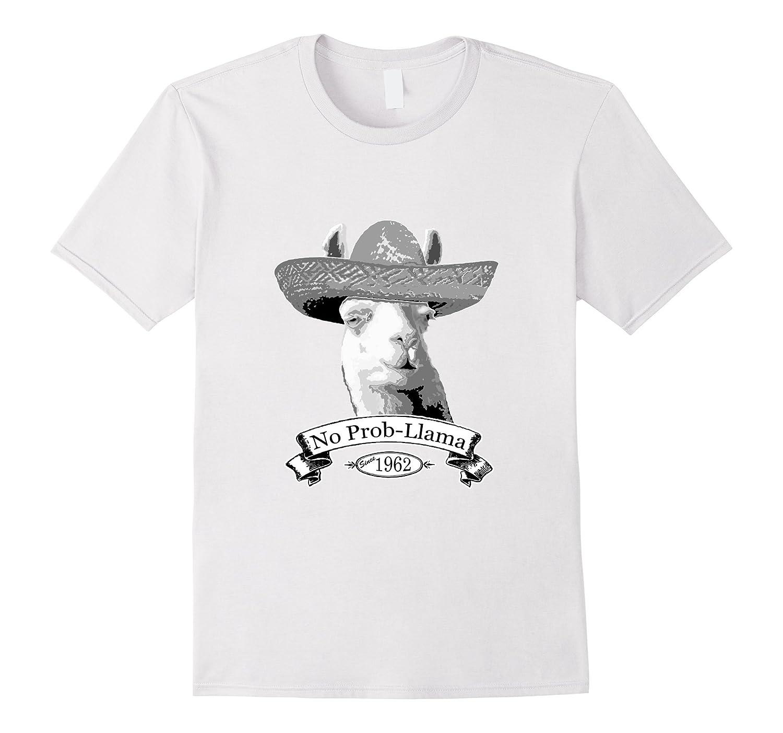 55th Happy Birthday T-Shirt Gift - 1962 Age 55 Llama Shirt-Vaci