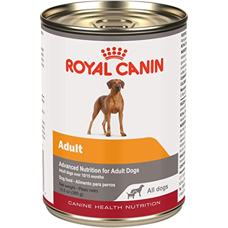 Royal Canin Canine Health Nutrition Adult In Gel Canned Dog Food (Case Of 12/