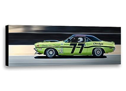 Amazon Com 1970 77 Sam Posey Dodge Challenger Trans Am Racecar Car