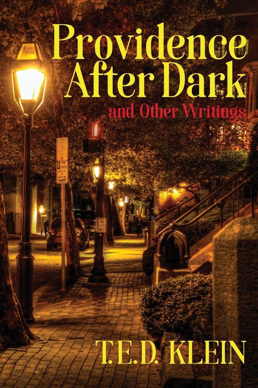 Providence After Dark And Other Writings  English Edition