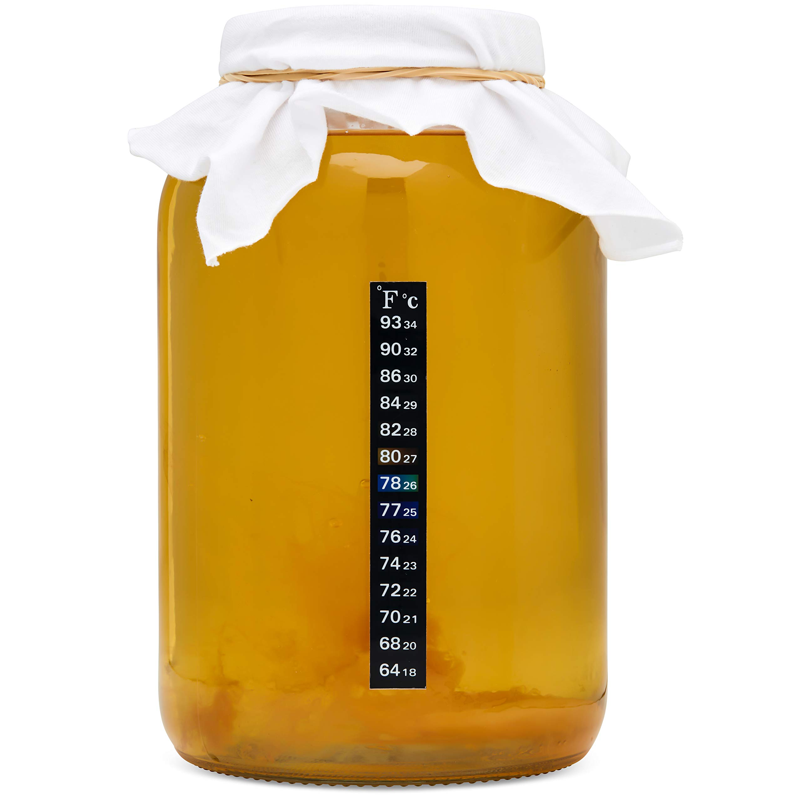 Kombucha Starter Kit .Premium Kombucha Brewing Ingredients included and Fresh Kombucha SCOBY, Durable Glass 1 Gallon Mason Jar, Temp Strip, PH Tests and Funnel included by Miloo (Image #7)