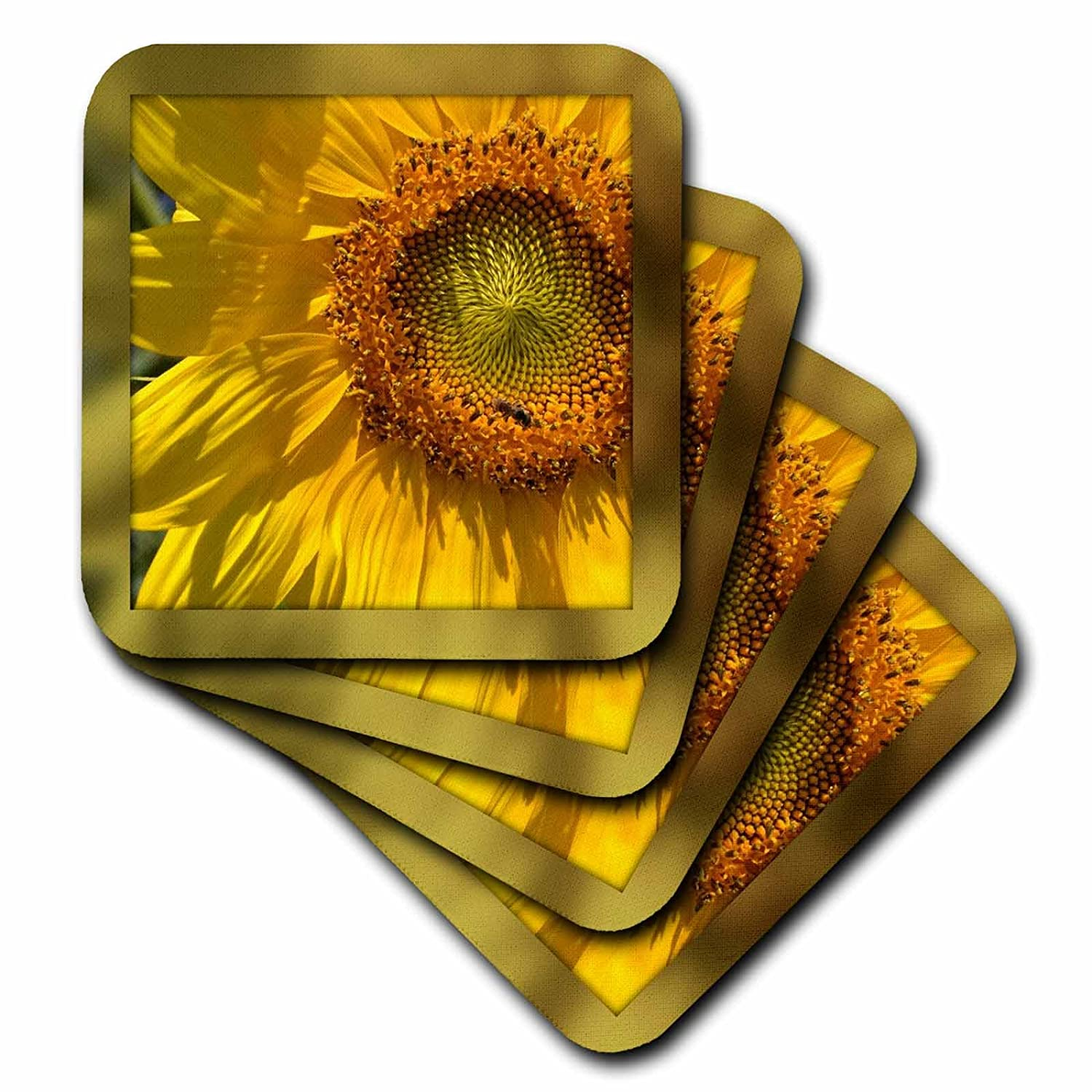 3dRose cst/_32648/_1 Framed Yellow Sunflower Flowers Photography-Soft Coasters Set of 4