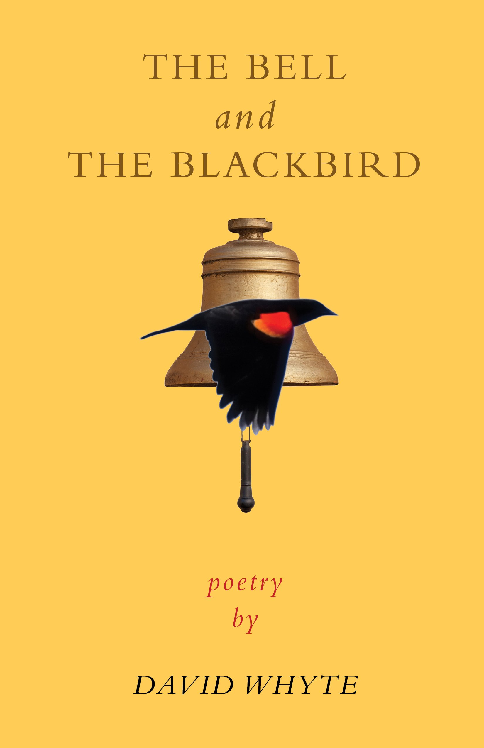 Image result for images the bell and the blackbird
