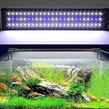 Elegant Etime Aquarium Beleuchtung Aquariumlicht LED Aquariumleuchten  Aquariumlampen Aufsetzleuchte Weiß+blau Für 60 80cm Aquarium