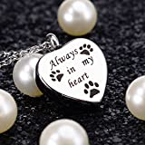 Always In My Heart Pet Paw Cremation Urn Necklace