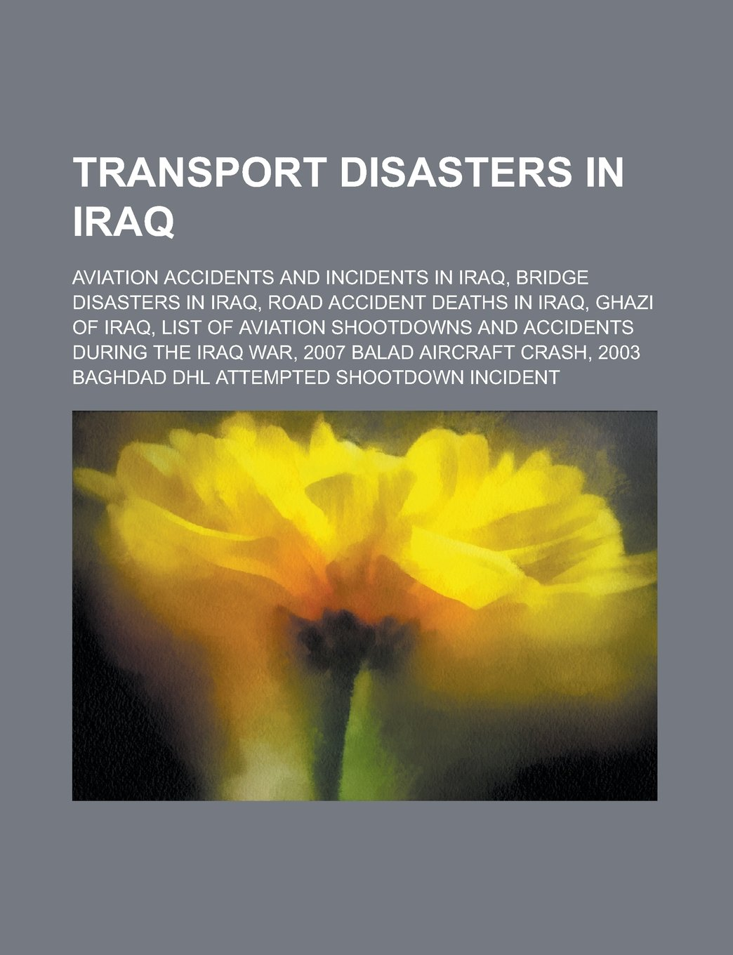 List of aviation shootdowns and accidents during the Iraq War