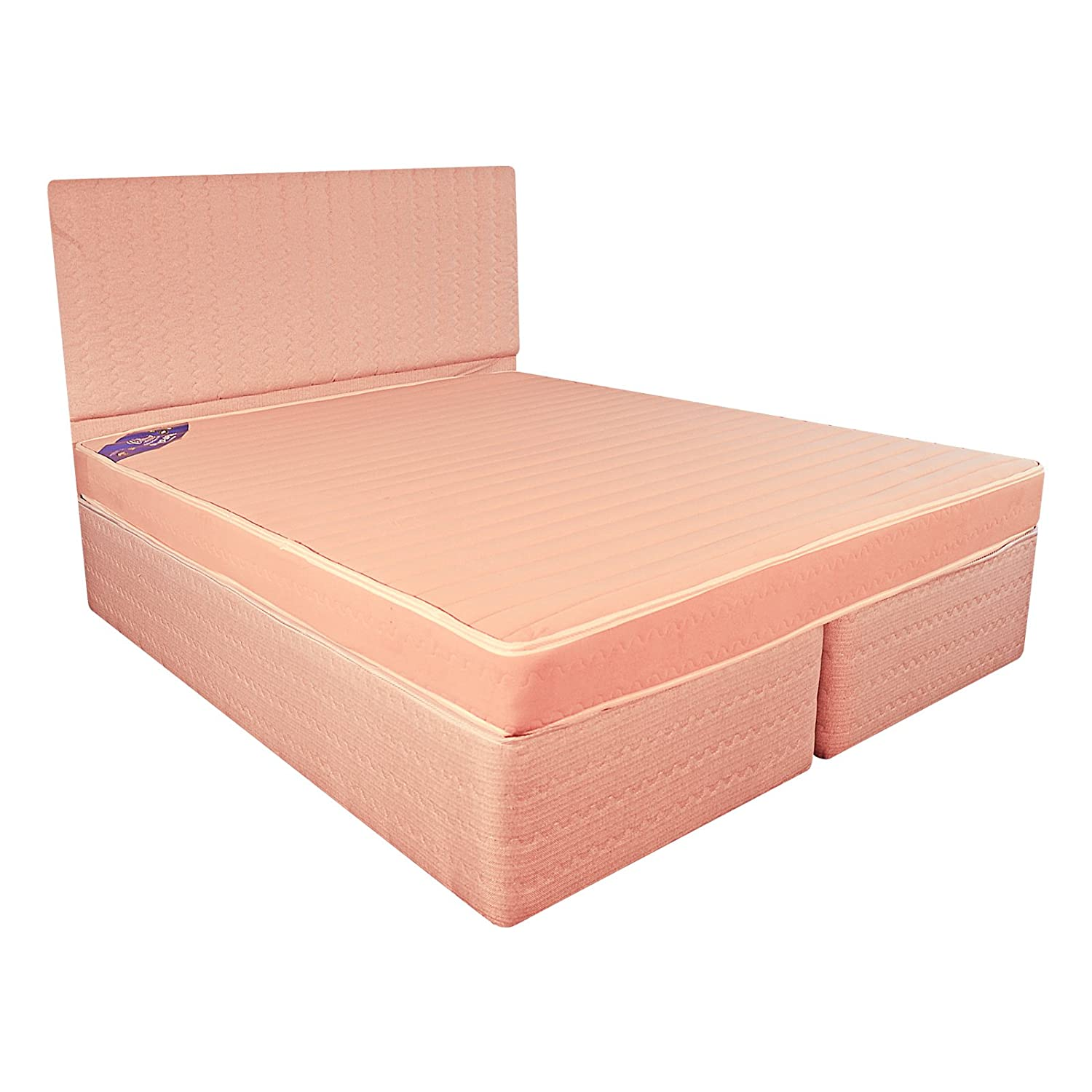 Centuary Mattresses Wellness Collection Ortho Spine 5 Inch Queen