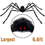 Pawliss Scary Halloween 6.6 Ft. 200cm Giant Spider Outdoor Decor Yard Decorations, Fake Large Hairy Spider Props