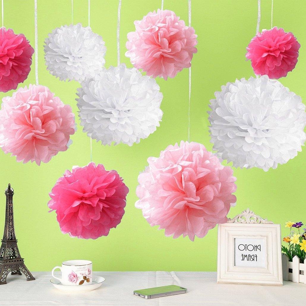 Rbenxia 18 Pcs Flower Ball Tissue Hanging Paper Pom Poms Premium