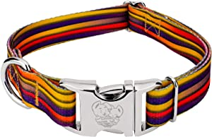 Country Brook Petz - Premium Dog Collar - Groovy Collection