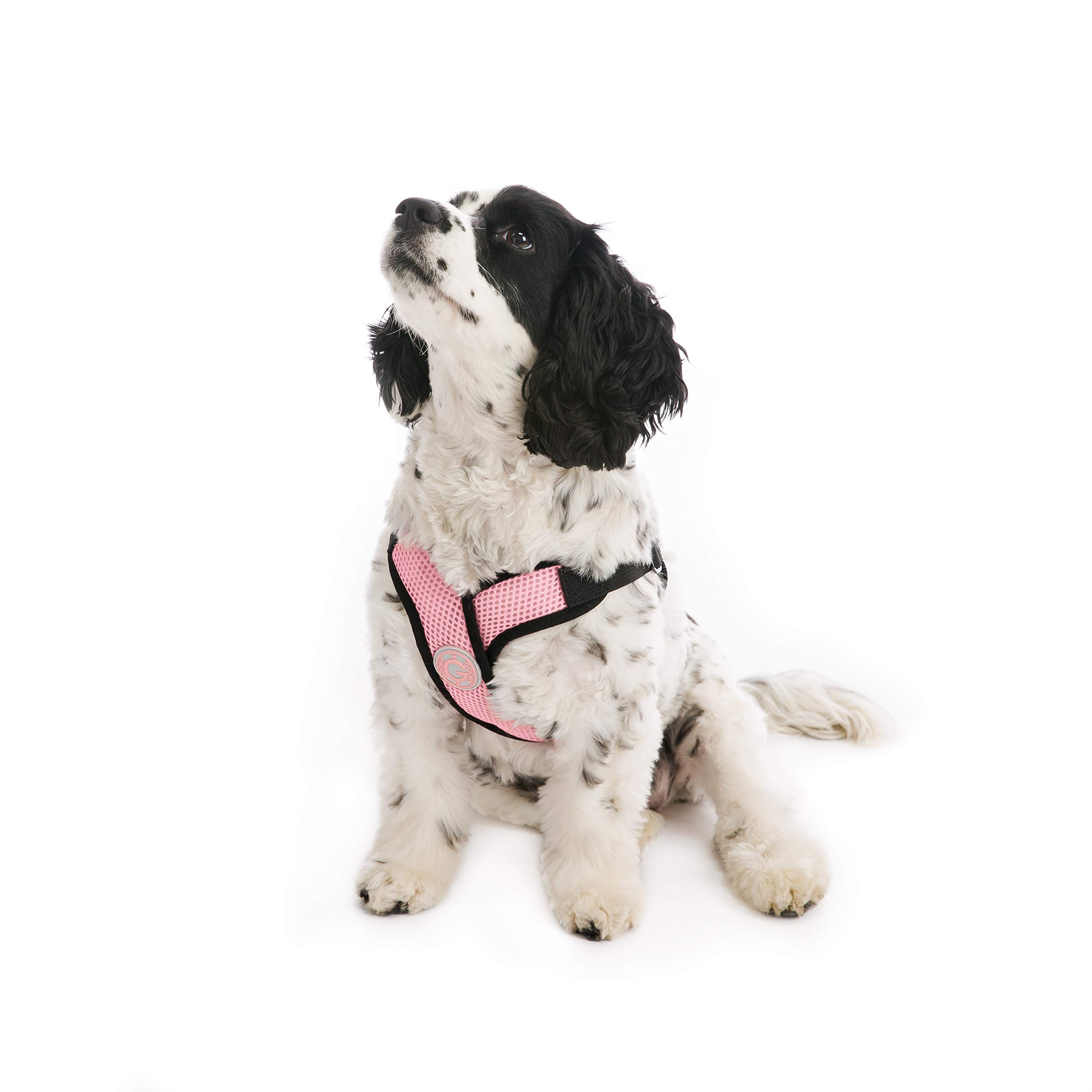 Gooby - Comfort X Step-in Harness, Choke Free Small Dog Harness with Micro Suede Trimming and Patented X Frame, Pink, X-Large by Gooby