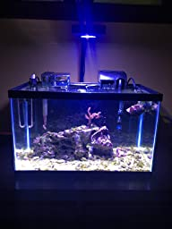 Amazon Com Prime Hd Aqua Illumination Aquarium Led