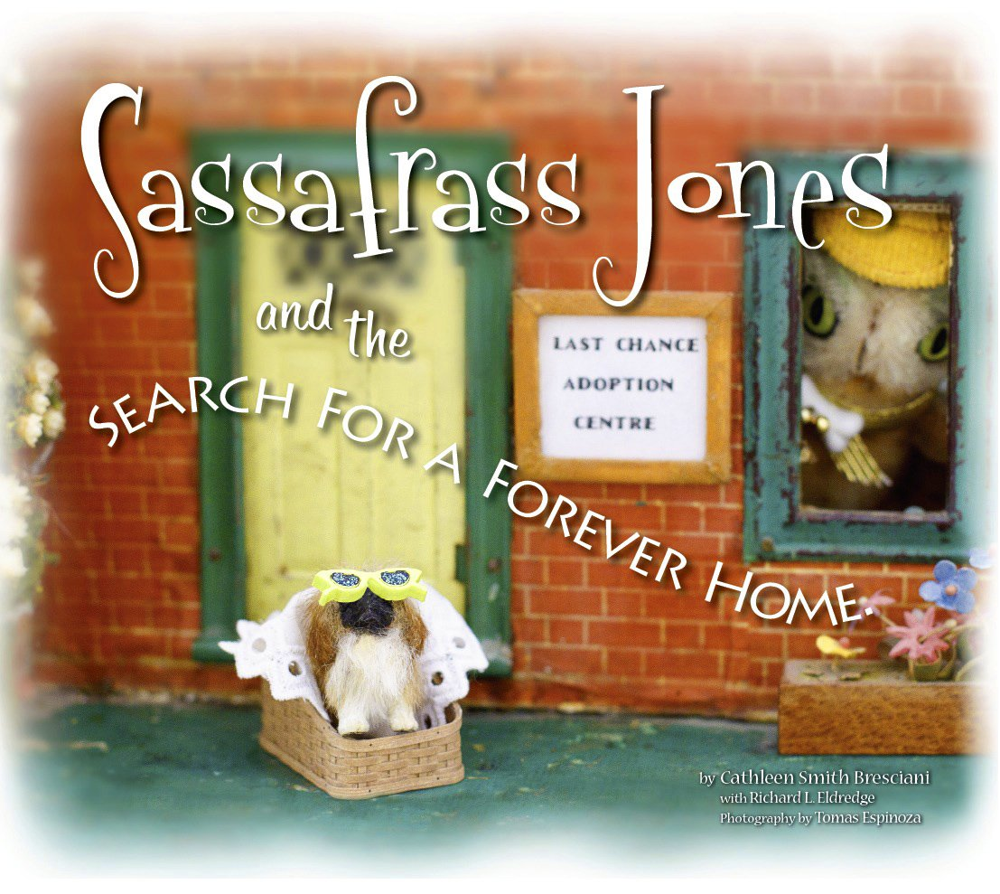 Sassafrass Jones and the Search for a Forever Home pdf epub