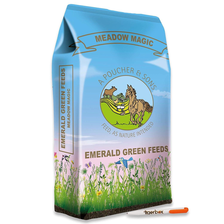 1 x 20KG BALE Emerald Green Feeds 20KG Meadow Magic Grass Pellets Horse Food and Tigerbox AntiBacterial Pen.