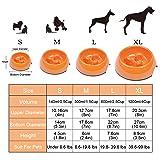 Super Design Anti-Gulping Dog Bowl Slow