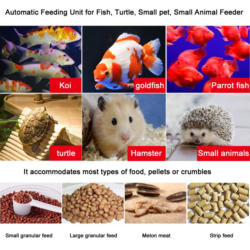 FREESEA Aquarium Everyday Fish Feeder with Automatic Mode and Manual Mode