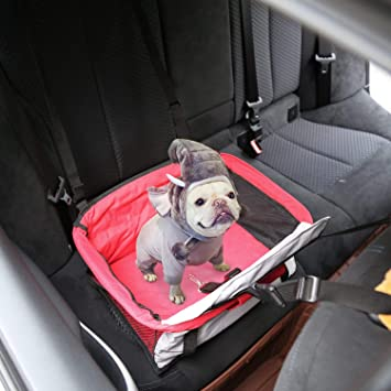 Incredible Kinbor Dog Booster Car Seat Perfect For Small And Medium Pets Evergreenethics Interior Chair Design Evergreenethicsorg