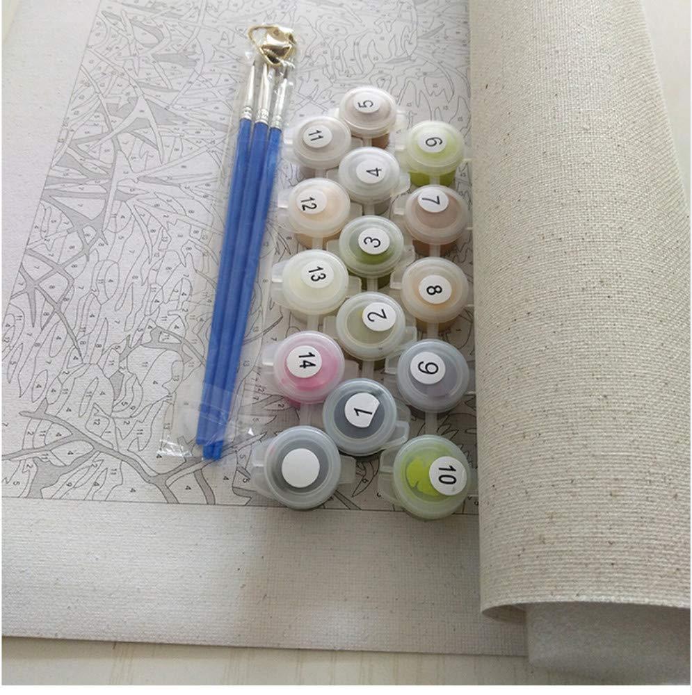 HXQQ HD Imprimer Peinture Color/é Bouddha Peinture /À lhuile Mur Art Photo Affiche Affiche Toile Peintures D/écor /À La Maison Mur Art HD Impression sur Toile 50x50cm