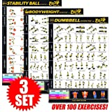 """Eazy How To Multi Pack Bundle Exercise Workout Poster BIG 28 x 20"""" Train Endurance, Tone, Build Strength & Muscle Home Gym Chart - Premium"""