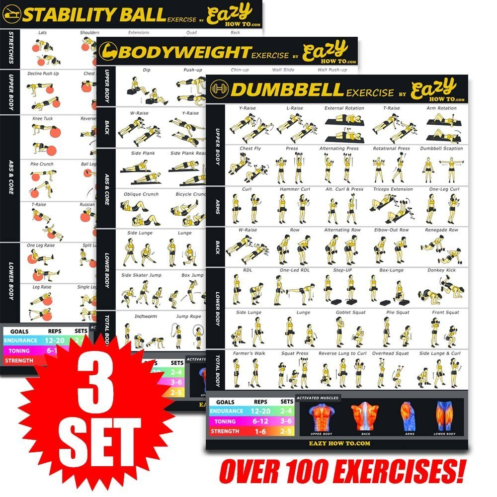 Eazy How To 3 Pack Bundle Exercise Workout Poster BIG 28 x 20'' Train Endurance, Tone, Build Strength & Muscle Home Gym Chart - Standard