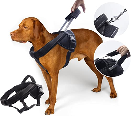YOGADOG Heavy Duty Dog Harness