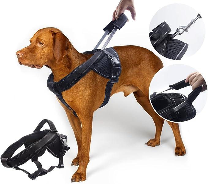 Yogadog Heavy Duty Dog Harness   Amazon