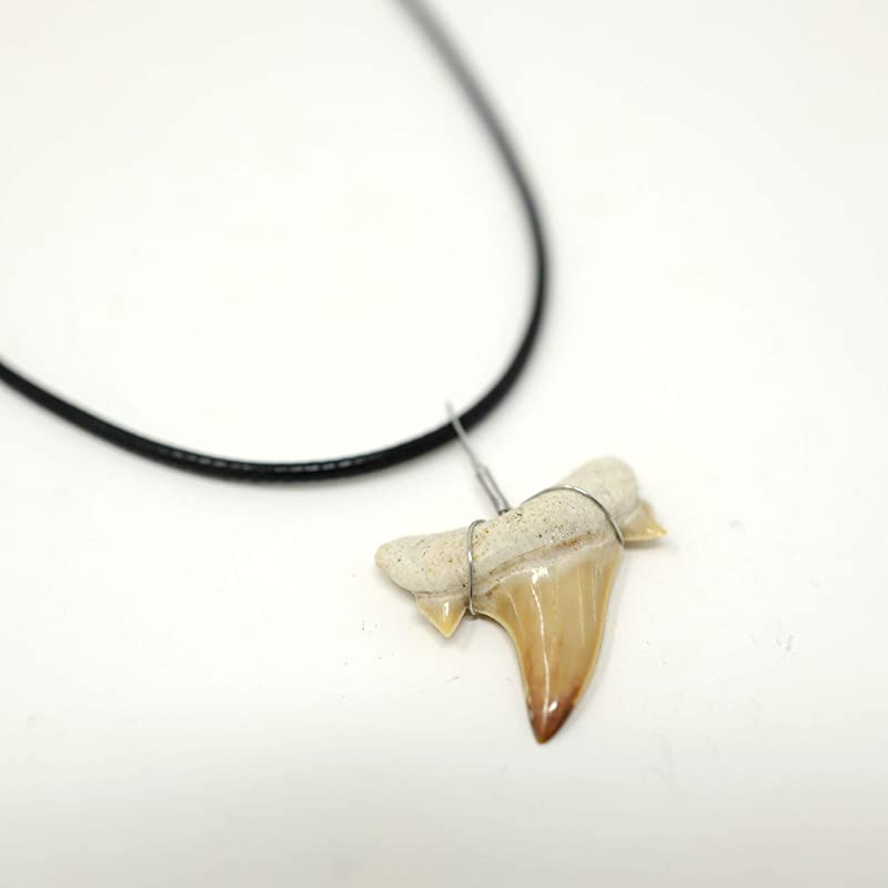 Shark/'s Tooth Dinosaur Silver Pewter Pendant On A Waxed Cord