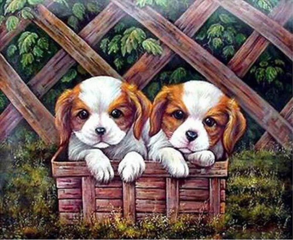 Kit de pintura por números para adultos y niños, pintura al óleo digital de dos cachorros en una cesta, lienzo para decoración del hogar de 40,6 x 50,8 cm (sin marco)