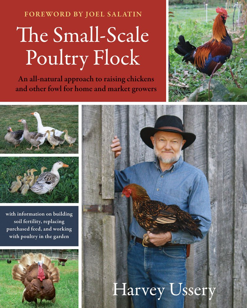 the small scale poultry flock an all natural approach to raising